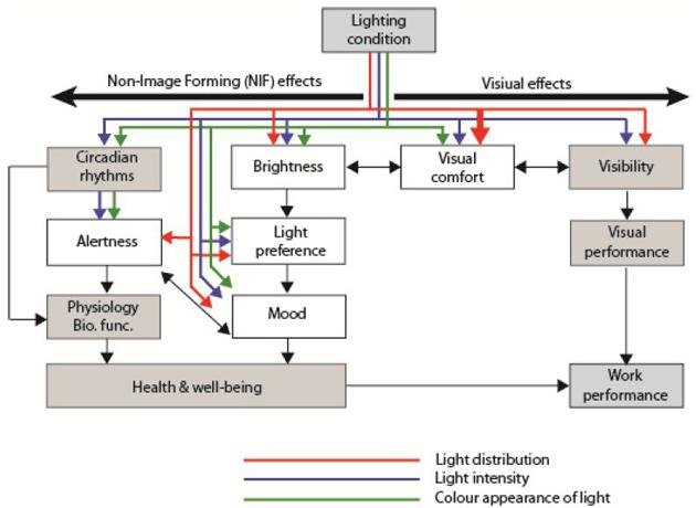 Apiparn_Conceptuel diagram_630
