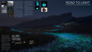 Road to Light by Yuhan Luo, Di Lan, Yuan Liu and Yusong Liu, China